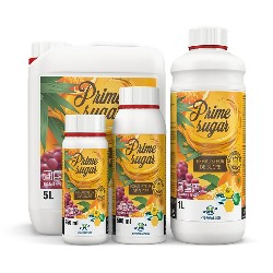 Kit Ventilation Extracteur-Intracteur 185m3