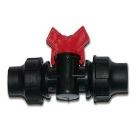 LES BONZAIS - Rustica